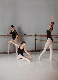 Female ballet dancers training together in leotards