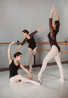 Female ballet dancers training together in pointe shoes and leotards