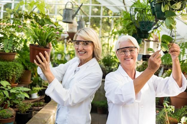 Женщины-коллеги улыбаются при осмотре горшечных растений