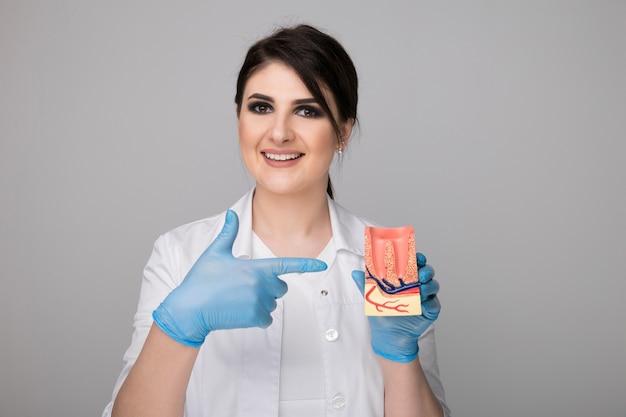 회색 배경 위에 고립 된 모델 치은 여성 치과 의사.