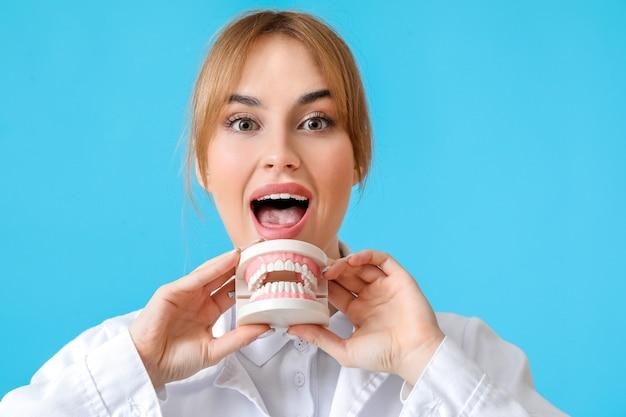 色の表面にプラスチック製の顎モデルを持つ女性歯科医