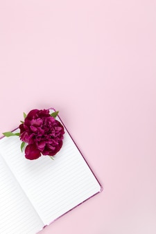 Female desktop, peony flower on open notepad, on pastel pink background.