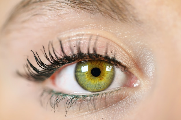 Female eye close-up.
