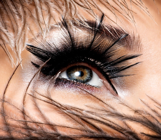 Occhio femminile con un bel trucco di moda con eyelashe lungo falso