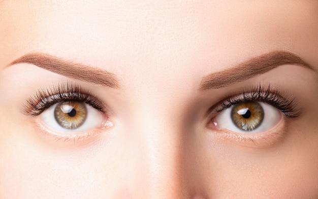 まつげの長い女性の目。クラシックな1d、2dまつげエクステンションと薄茶色の眉毛がクローズアップ。まつげエクステンション、ラミネーション、バイオウェーブ、マイクロブレードのコンセプト