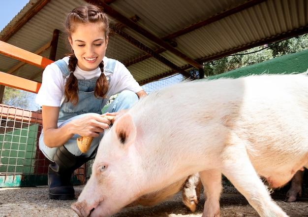 Женщина-фермер кормит свиней