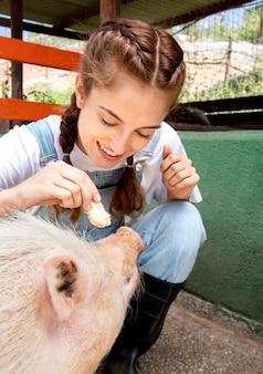 豚に餌をやる女性農家