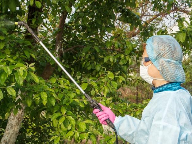 보호복과 마스크를 쓴 여성 농부가 과수원에서 압력 분무기와 화학 물질로 곰팡이 질병이나 해충의 사과 나무를 뿌리고 있습니다.