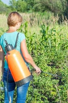 여성 농부는 정원에 있는 압력 분무기로 곰팡이 질병이나 해충으로부터 감자 식물을 보호하고 있습니다