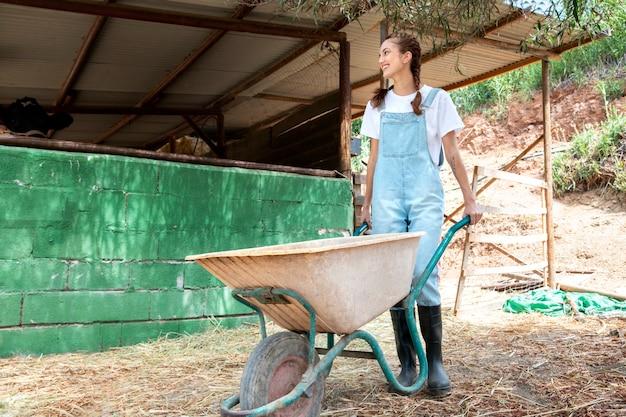 牛の世話をしている女性農家