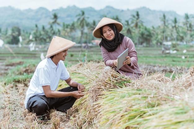 여성 농부는 논에서 벼 수확량을 계산할 때 태블릿을 사용하여 남성 농부에게 데이터를 보여줍니다.