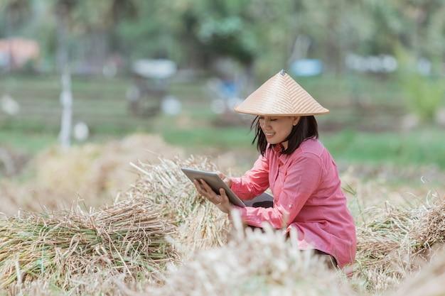 여성 농부들은 논에서 태블릿을 사용하여 쪼그리고 앉을 때 모자를 쓰고