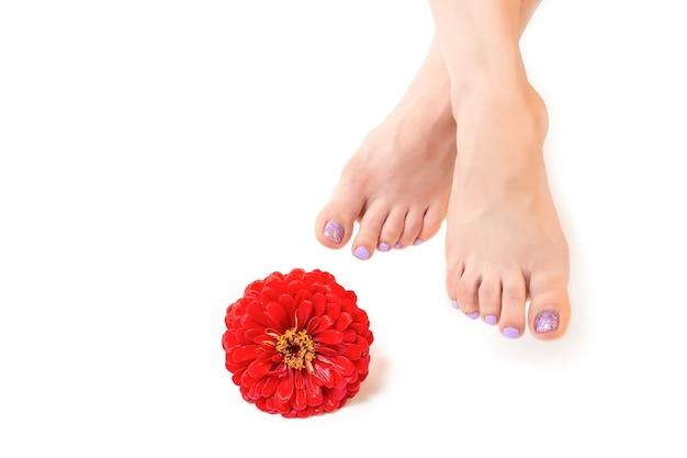 紫色のペディキュアを持つ女性の足