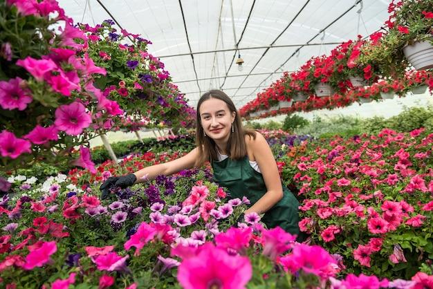 작업복을 입은 여성 꽃집은 온실에서 꽃을 돌봅니다. 봄