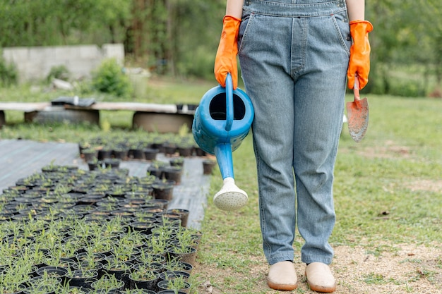Female gardener concept a gardener holding the blue watering can and metal shovel standing among evergreen vegetable field with a variety of plants.