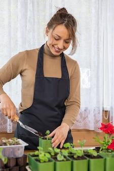 가정 정원에서 식물을 재배하는 여성 정원사, microgreens 야채 허브 묘목을 냄비에 재배하는 젊은 아름다운 여성, 식품 재배, 유기농 제품, 지속 가능한 제로 비용 원예