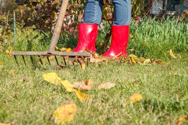Садовница в красных резиновых сапогах осенью чистит сад старыми граблями.