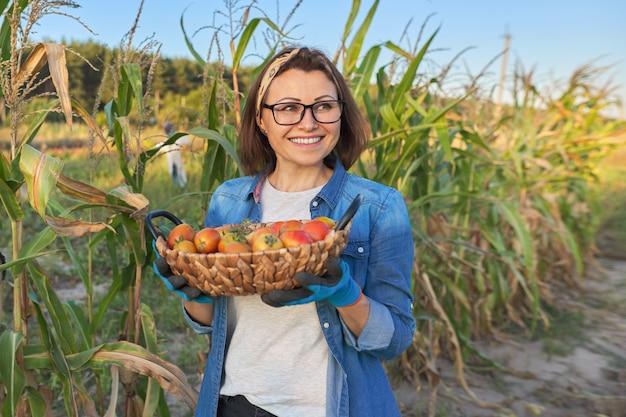 完熟トマトのバスケットを持つ菜園の女性の庭師。趣味、ガーデニング、家庭菜園での有機野菜の栽培、健康的な自然食品、コピースペース