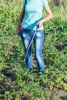 여성 정원사는 정원에 있는 압력 분무기로 곰팡이 질병이나 해충으로부터 감자 식물을 보호하고 있습니다