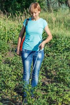 여성 정원사는 압력 분무기로 곰팡이 질병이나 해충으로부터 감자 식물을 보호하고 있습니다.