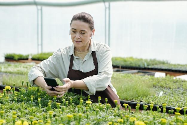 꽃 묘목 돌보기에 대한 온라인 비디오를 보는 여성 정원사