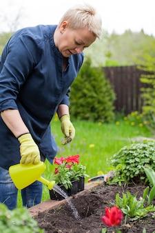 여성 정원사 급수 깡통에서 갓 심은 꽃과 식물