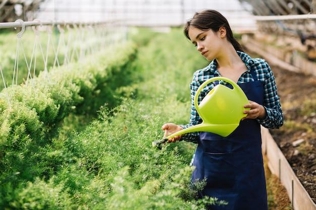 Giardiniere femminile che lavora nella serra