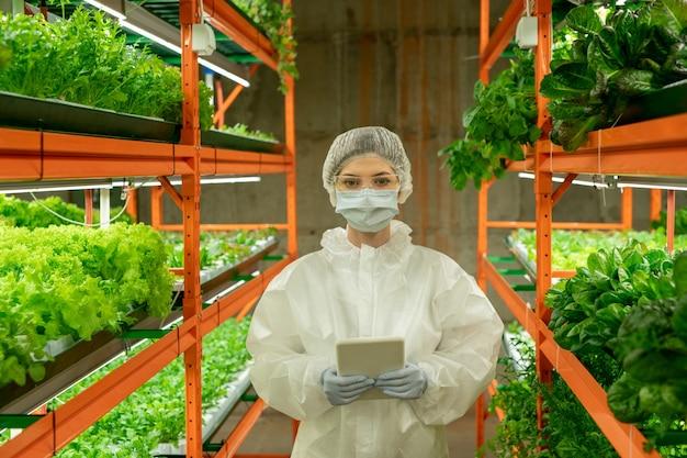 보호 작업복, 마스크, 장갑, 안경, 태블릿을 사용하는 모자를 쓴 여성 온실 직원이 수직 농장 내부를 바라보고 있습니다.