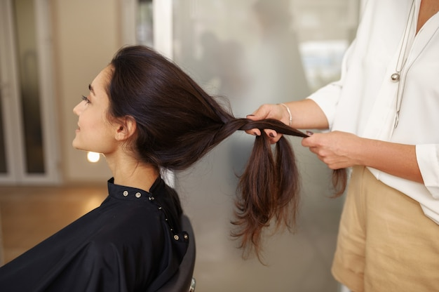 Female hairdresser combs woman's hair, hairdressing salon. stylist and client in hairsalon. beauty business, professional service