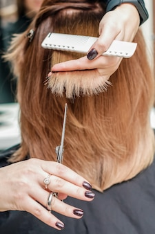 Female hairdresser hold in hand between fingers lock of red hair and cuts hair tips