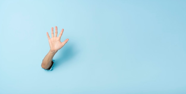 Female hand gesturing showing hallo on blue background.