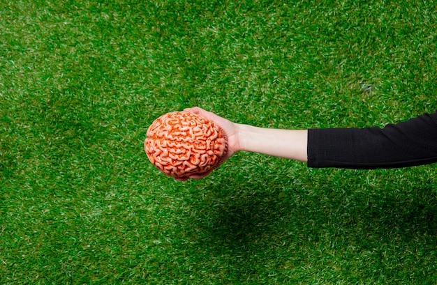 Female hand hold human brain over green grass