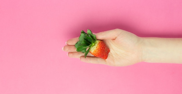 Женская рука держит большую клубнику на розовом фоне. плоский лежал баннер. место для текста. абстрактный.