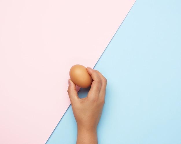 ピンクブルーの背景に全体の茶色の鶏の卵を持っている女性の手