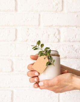 흰색 벽돌 표면에 신선한 잎으로 아름 다운 하얀 촛불을 들고 여성 손