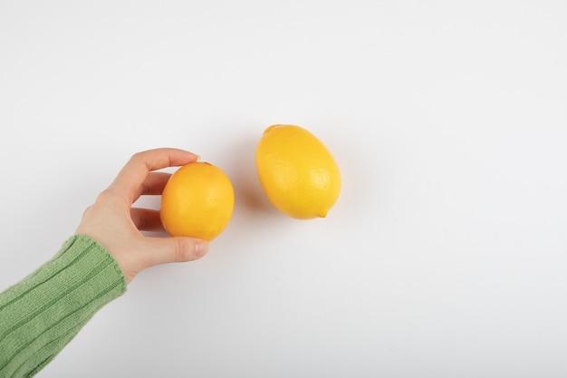 Mano femminile che tiene limone giallo fresco su bianco.
