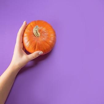 コピースペースと紫色のテーブルにカボチャを持っている女性の手