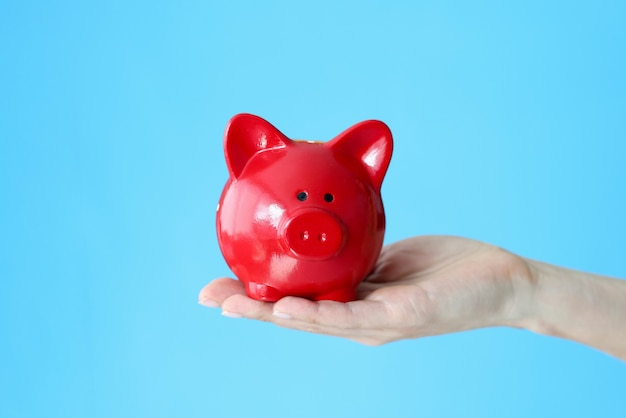 Female hand holding red piggy bank on blue background closeup