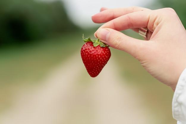 흐릿한 녹색 배경에 딸기를 들고 있는 여성의 손