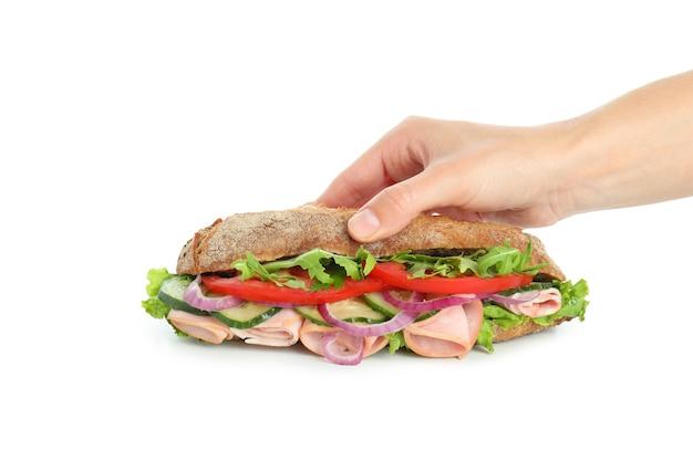 여성의 손에는 흰색 배경에 격리된 치아바타 샌드위치가 있습니다.