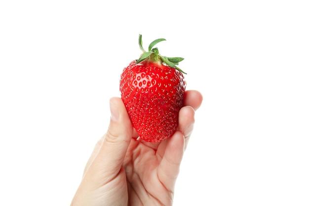 여성 손 보유 신선한 딸기, 흰색 절연