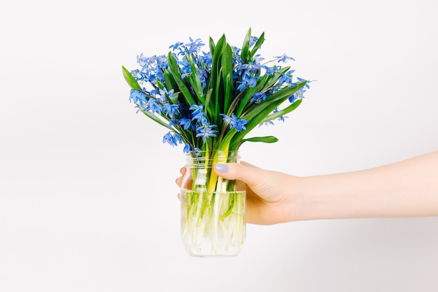 A female hand holds a jar with spring blue flowers on a gray background
