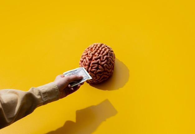 Женская рука держит деньги возле мозга на желтой поверхности