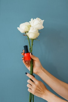 Female hand holds red nail varnish and white roses on blue