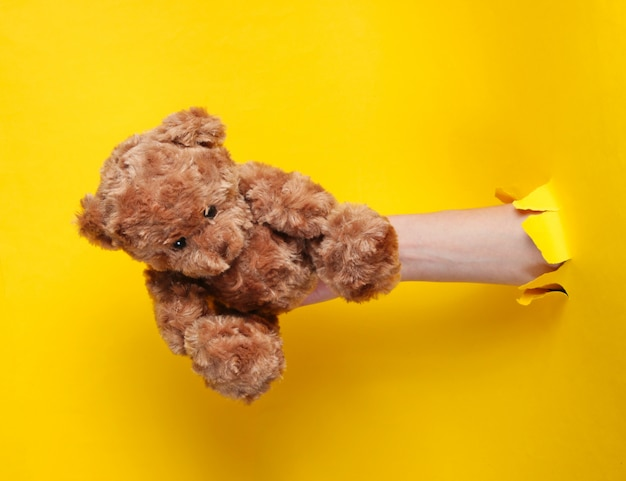Female hand holds teddy bear through torn yellow paper. minimalistic concept