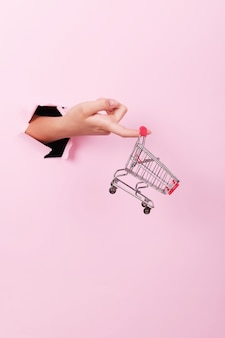 Female hand holds through a hole a empty mini grocery shopping trolley on a pink background, sales concept with copy space, minimalism