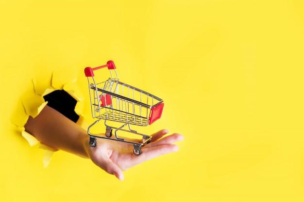 Female hand holds through a hole a mini grocery shopping trolley on a yellow paper. sales concept