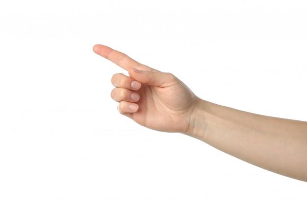 흰색 표면에 고립 된 여성 손