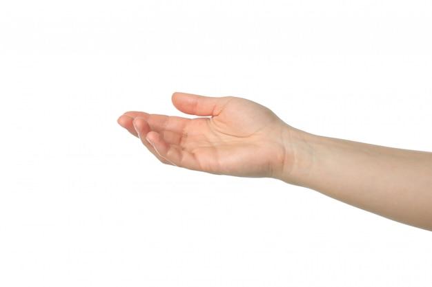 Женская рука, изолированная на белой поверхности