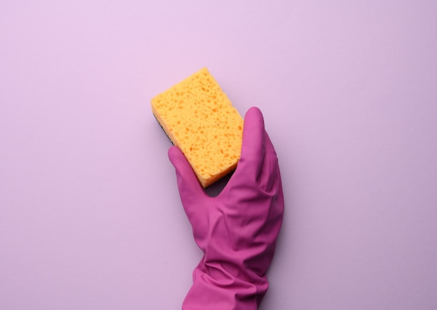 Female hand in a pink rubber glove holds a yellow kitchen sponge on a purple wall, close up